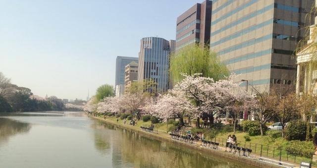 SAKURA☆2014